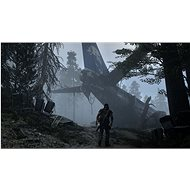 Days Gone – PS4 - Hra na konzolu