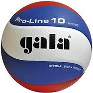 Gala Pro Line BV5581S - Volejbalka