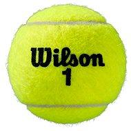 Wilson Roland Garros All Court - Tenisová loptička