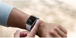 https://cdn.alza.sk/Foto/ImgGalery/Image/Article/apple-watch-ekg-nahled.jpg