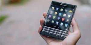 https://cdn.alza.sk/Foto/ImgGalery/Image/Article/blackberry-pexels-nahled.jpg