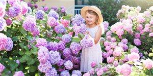 https://cdn.alza.sk/Foto/ImgGalery/Image/Article/srpen-na-zahrade.jpg