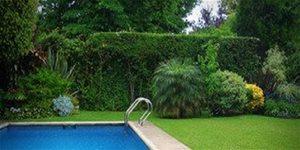 https://cdn.alza.sk/Foto/ImgGalery/Image/Article/swimming-pool-1224450.jpg