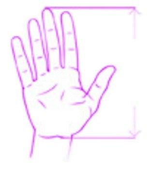 Správna veľkosť myši; ruka