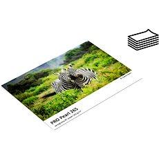 FOMEI Jet PRO Pearl 265 A4/5 – testovacie balenie - Fotopapier