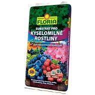 FLORIA Substrát pre kyslomilné rastliny 50 l - Substrát