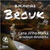 Brouk - Audiokniha MP3