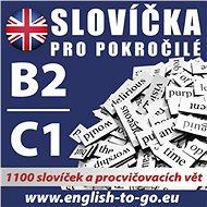Angličtina – Slovíčka pro pokročilé B2/C1 - Audiokniha MP3