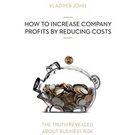 HOW TO INCREASE COMPANY PROFITS BY REDUCING COSTS - Audiokniha MP3