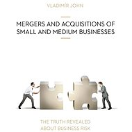 MERGERS AND ACQUSITIONS OF SMALL AND MEDIUM BUSINESSES - Audiokniha MP3