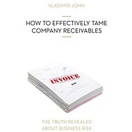 HOW TO EFFECTIVELY TAME COMPANY RECEIVABLES - Audiokniha MP3