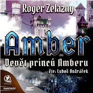 Amber 1 - Devět princů Amberu - Audiokniha MP3