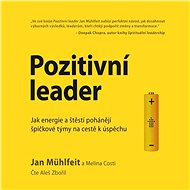Audiokniha MP3 Pozitivní leader - Audiokniha MP3