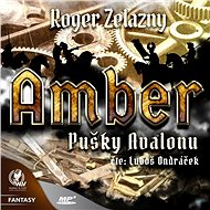 Amber 2 - Pušky Avalonu - Audiokniha MP3
