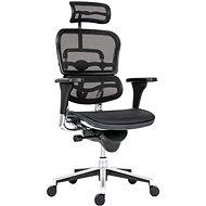 ANTARES Ergohuman mesh čierna - Kancelárska stolička