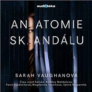 Anatomie skandálu - Audiokniha MP3