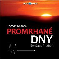 Promrhané dny - Audiokniha MP3