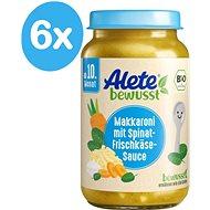 ALETE BIO Zelenina smakarónmi a syrom 6× 220 g - Príkrm