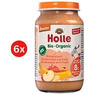 Holle bio ovocné müsli 6 ks - Príkrm
