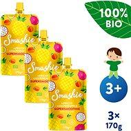 SALVEST Smushie BIO Ovocné smoothie s marhuľou, ananásom a ľanovými semienkami 3× 170 g