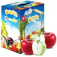 Ovocňák mušt jablko 100 % 3 l - Šťava