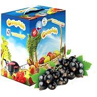 Ovocňák mušt jablko-čierne ríbezle 3 l - Šťava