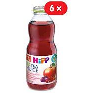 HiPP BIO Nápoj s ovocnou šťavou a šípkovým čajom - 6x 500ml - Nápoj