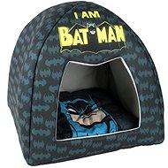 Cerdá Kukaňa Batman 45 × 40 cm - Pelech