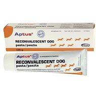 Aptus Reconvalescent Dog pasta 100 g - Doplnok stravy pre psov