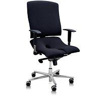 3DE Asana Steel čierna - Kancelárska stolička
