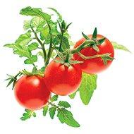 Click And Grow Paradajka mini - Sadenice