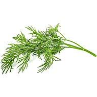 Click and Grow Kôpor - Sadenice