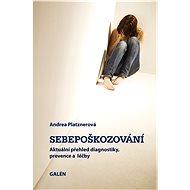 Sebepoškozování - E-kniha