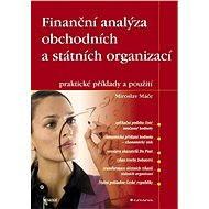Finanční analýza obchodních a státních organizací - E-kniha