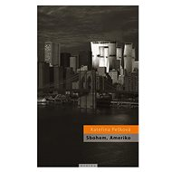 Sbohem, Ameriko - Elektronická kniha