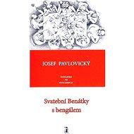Svatební Benátky s bengálem - Elektronická kniha