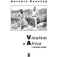 Vinařem v Africe i leckde jinde - Elektronická kniha