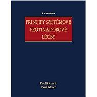 Principy systémové protinádorové léčby - E-kniha