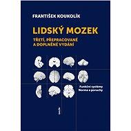 Lidský mozek - Elektronická kniha