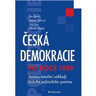 Česká demokracie po roce 1989 - Elektronická kniha