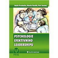 Psychologie efektivního leadershipu - Elektronická kniha