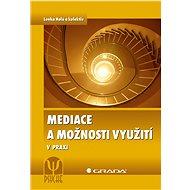 Mediace a možnosti využití - E-kniha