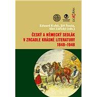 Český a německý sedlák v zrcadle krásné literatury 1848-1948 - E-kniha