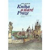 Kniha o staré Praze - Elektronická kniha