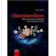 Hlavolamikon - E-kniha