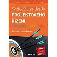 Světové standardy projektového řízení - Elektronická kniha