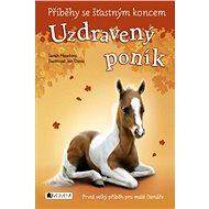 Příběhy se šťastným koncem – Uzdravený poník - Elektronická kniha