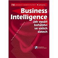 Business Intelligence - Elektronická kniha