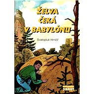 Želva čeká v Babylónu - Elektronická kniha