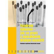 Syndrom vyhoření - Jak se prací a pomáháním druhým nezničit - Elektronická kniha